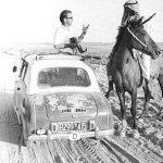 Reisende in der Wüste (1956)